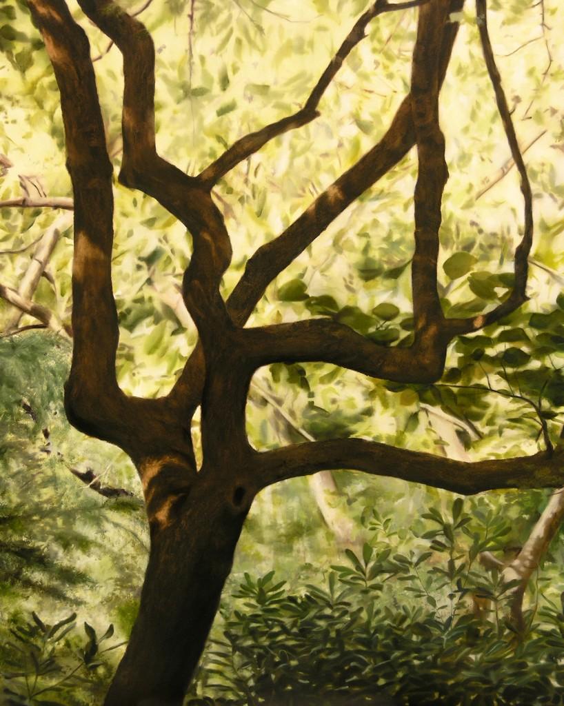thomas darnell turo park tree 130x162cm