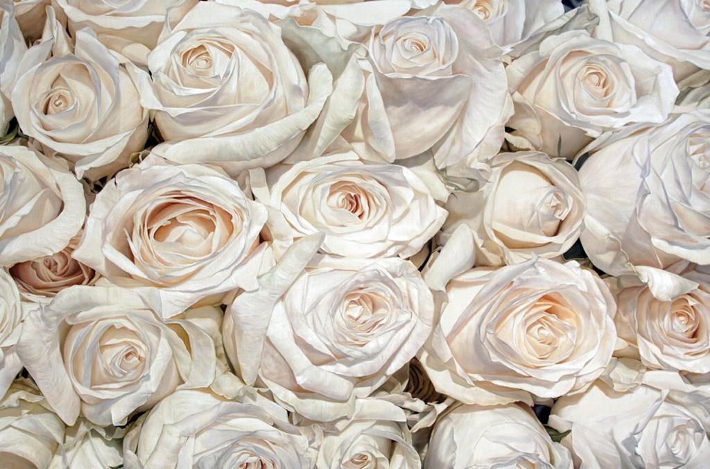 thomas darnell white cream roses 121x183cm